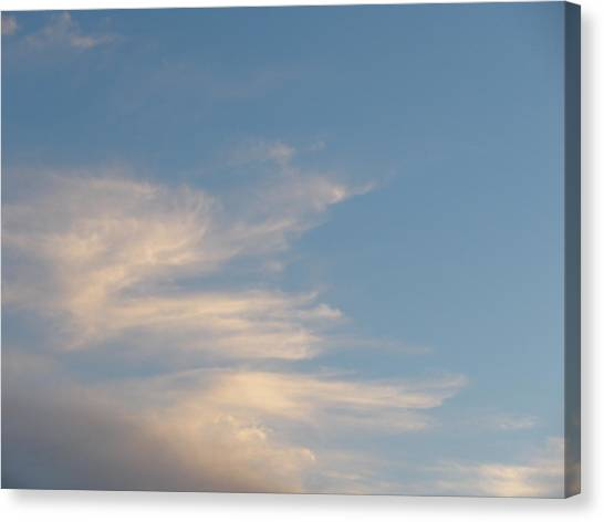 Florida Sky I Canvas Print by Suzanne Fenster