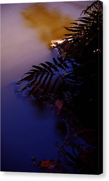 Florida Sunset 2 Canvas Print