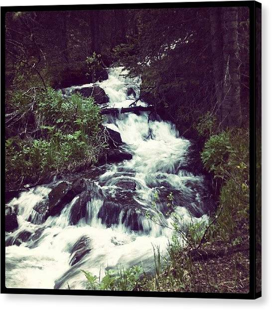 Wilderness Canvas Print - Flow by Kenny Kerns