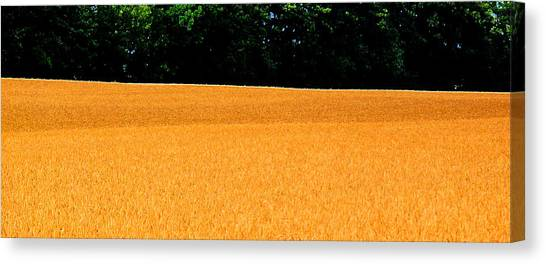 Flow Of The Field 3 Ae  Canvas Print by Lyle Crump