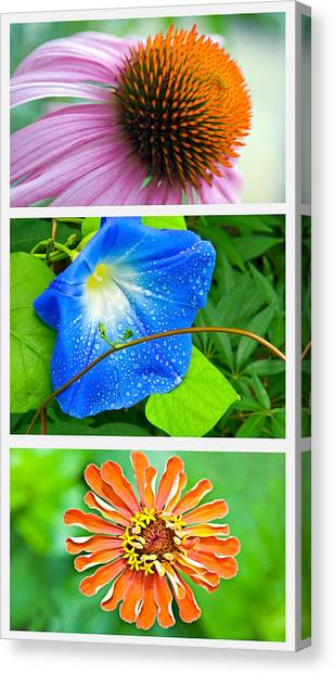 Flower Collage Part Two Canvas Print