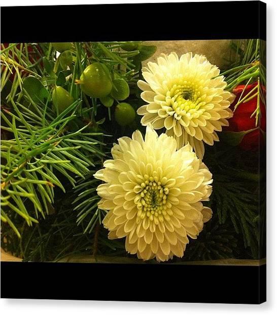 Presents Canvas Print - #flower #flowers #white #green #round by Jenni Munoz