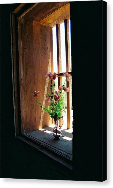 Flower In Window Canvas Print