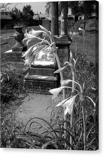 Flower Old Grave Canvas Print by Floyd Smith