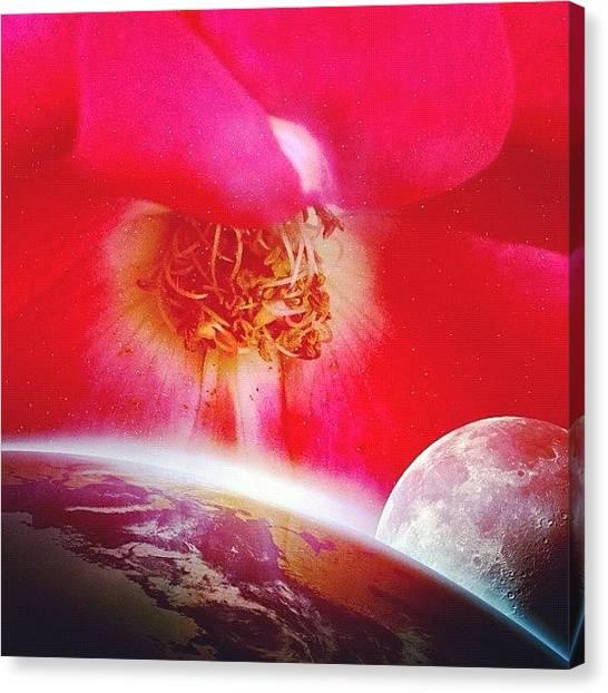 Floral Canvas Print - Flower Universe by Irina Moskalev