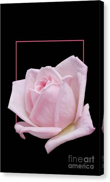 Flowerin Frame -10 Canvas Print
