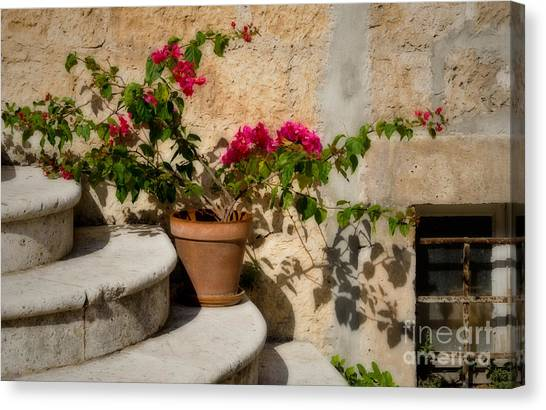 Flowerpot On Stairs In Kocura Croatia Canvas Print