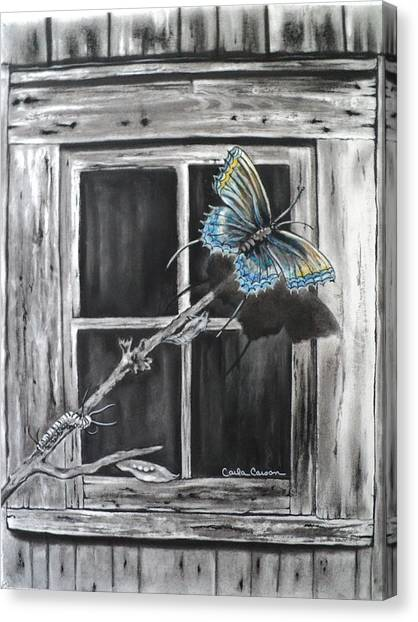 Caterpillers Canvas Print - Fly Away Free by Carla Carson