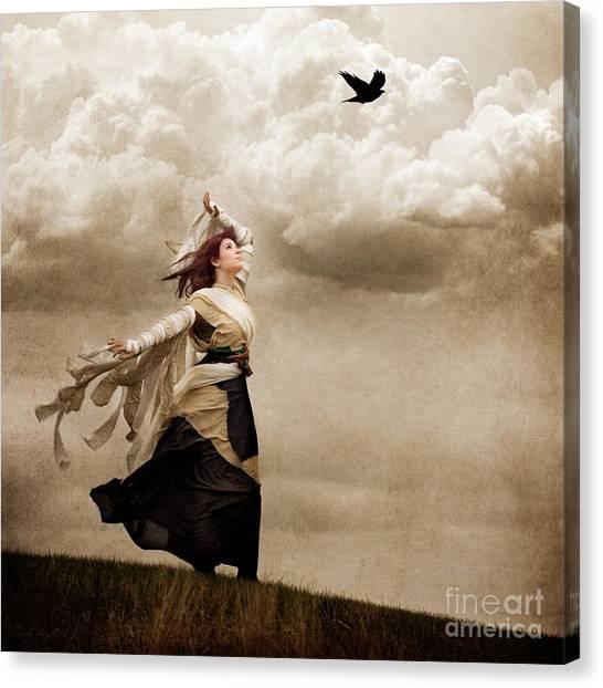 Flying Dreams Canvas Print