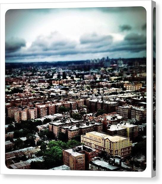 Queens Canvas Print - Flying Over Queens by Natasha Marco