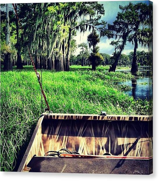 Bayous Canvas Print - Flying Over The Bayou by Caitlyn Stykowski