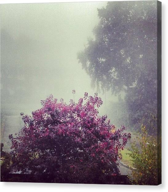 Peaches Canvas Print - Foggy #fog #spooky #tree #myhouse by Marcus Peach