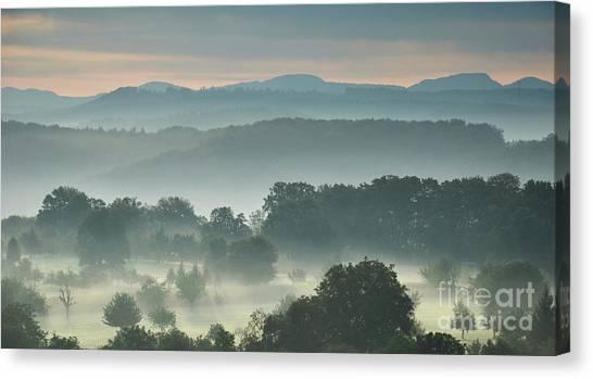 Fogy Day Canvas Print