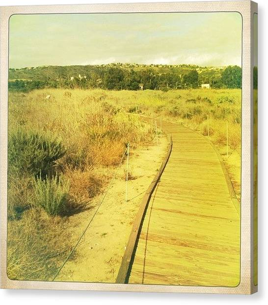 Ashes Canvas Print - Follow The Yellow Wood Road by Ash Eliot