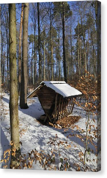 Baden Wuerttemberg Canvas Print - Food Point For Animals In Winterly Forest by Matthias Hauser