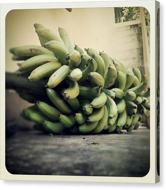 Bananas Canvas Print - For Onam!! by Hijesh V L