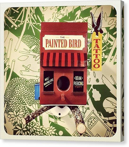 Design Canvas Print - for The Birds By Jeff Canham & Luke by Natasha Marco