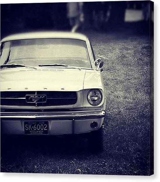 Ford Canvas Print - #ford #mustang #detroit #instagood by Junior  Scholars