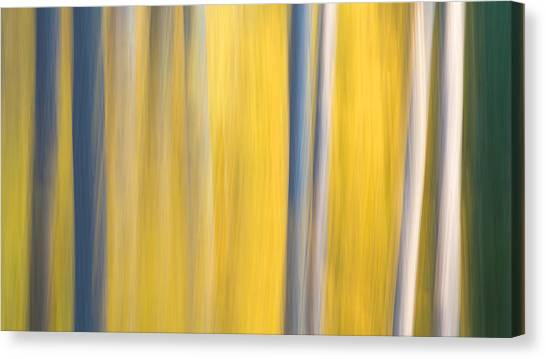 Forest Blur Canvas Print