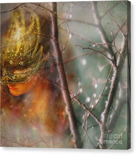 Forest Of Enchantment Canvas Print