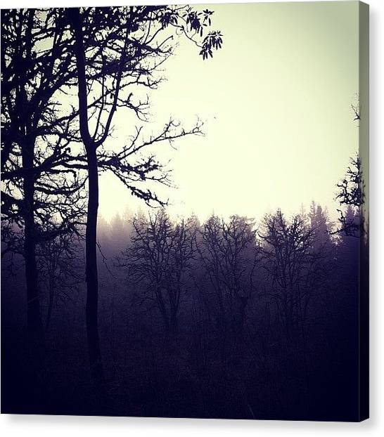 Foggy Forests Canvas Print - #forest #pdx #portland #oregon #nature by Karen Clarke