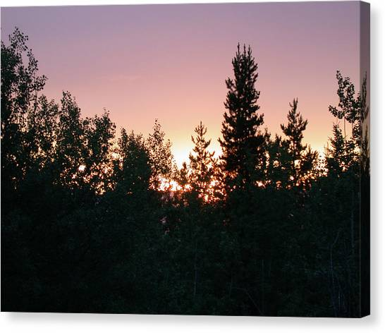 Forest Sunset Silhouette Canvas Print