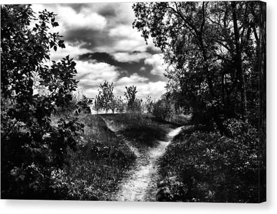 Fork In The Path Canvas Print by Karen Dawson