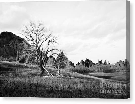 Fountain Valley In Black And White Canvas Print
