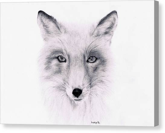 Fox Canvas Print by Lucy D
