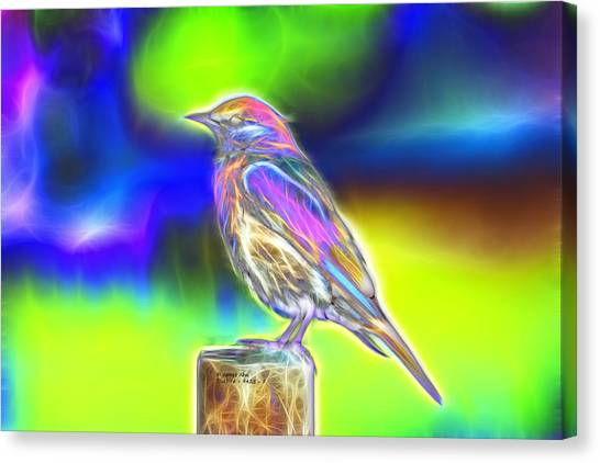 Fractal - Colorful - Western Bluebird Canvas Print