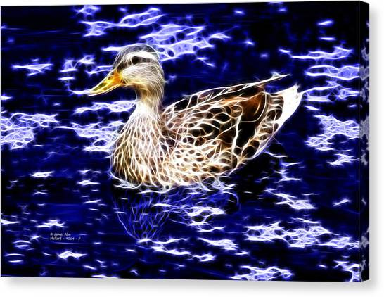 Fractal - Mallard In Pond- 9164 Canvas Print