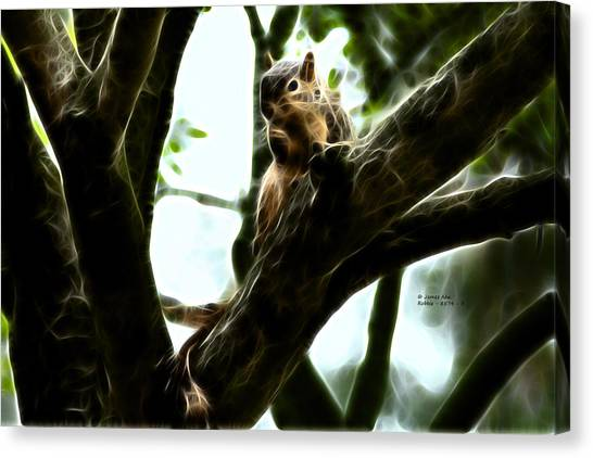 Fractal - Thumb Sucker - Robbie The Squirrel - 8574 Canvas Print