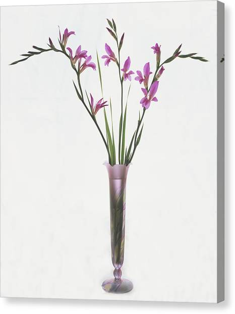 Freesias In Vase Canvas Print