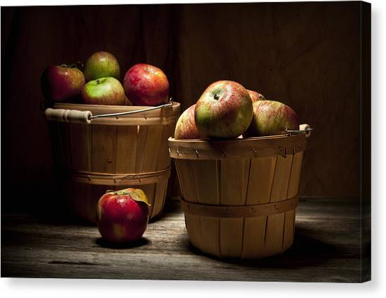 Bushel Basket Canvas Print - Fresh From The Orchard IIi by Tom Mc Nemar