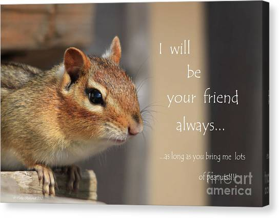 Canvas Print - Friend For Peanuts by Cathy Beharriell