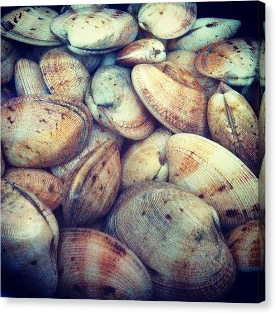 Seafood Canvas Print - Friends Coming Over And Clams Are On by TC Li