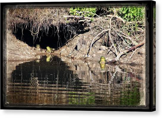 Frog King's Court Canvas Print