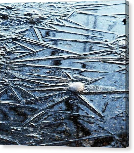 Snowflakes Canvas Print - Frozen Fantasy by Maria Venelinova