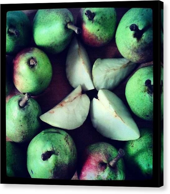 Pears Canvas Print - #fruitpassion by Glusia I