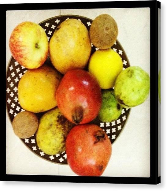 Mangos Canvas Print - #fruits #apple #pomegranate #guava by Sundar Kanchibhotla