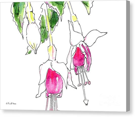 Modern Flower Canvas Print - Fuchsia Watercolor Painting 1a by Gordon Punt