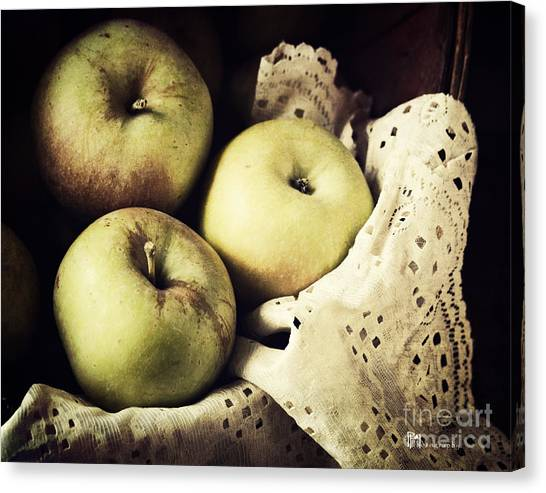 Fuji Apples Canvas Print