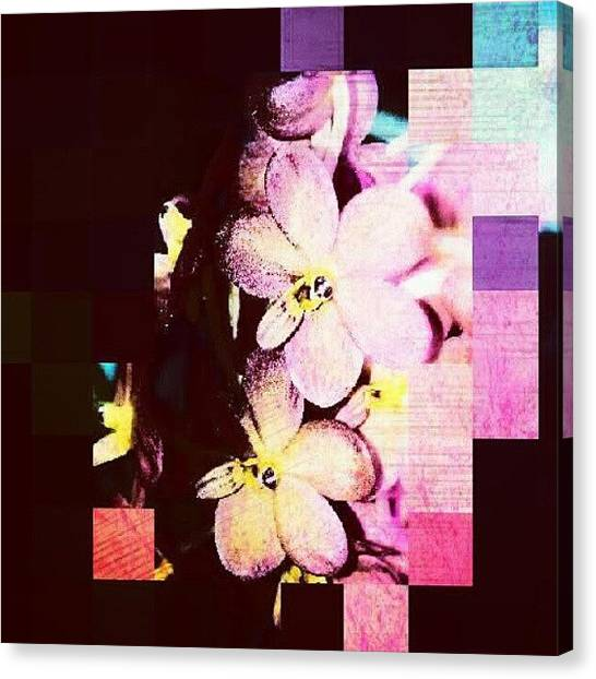 Orchids Canvas Print - #fun #orchid #editfever #editoftheday by Natalia D
