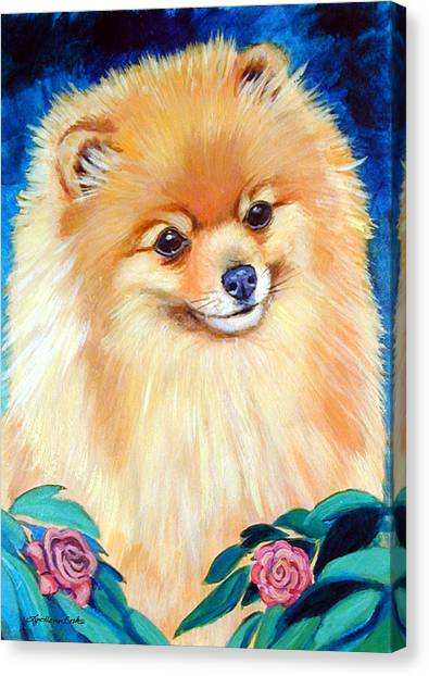 Pomeranians Canvas Print - Garden Bud - Pomeranian  by Lyn Cook