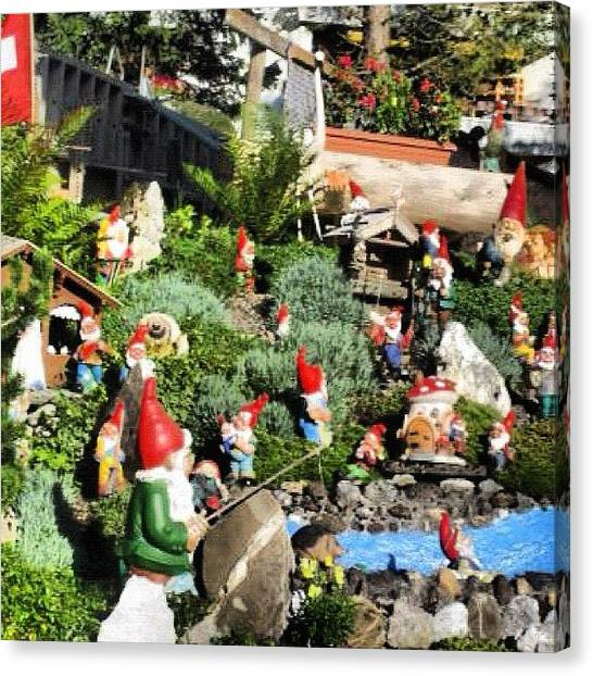 Swiss Canvas Print - Garden Gnomes by Marce HH