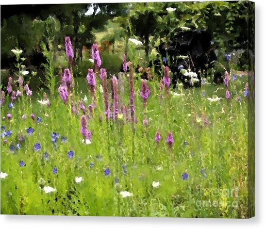 Garden On Bergey Road Canvas Print