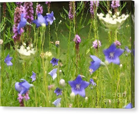 Garden On Bergey Road Detail Canvas Print