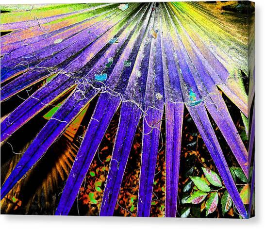 Garden Palm At Night Canvas Print