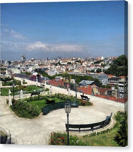 Soccer Leagues Canvas Print - Garden With A View To Central Lisbon by Jorge Silveira Sousa