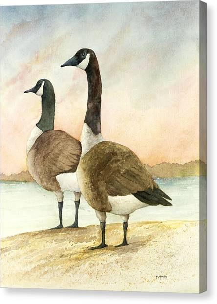 Geese 52012 Canvas Print